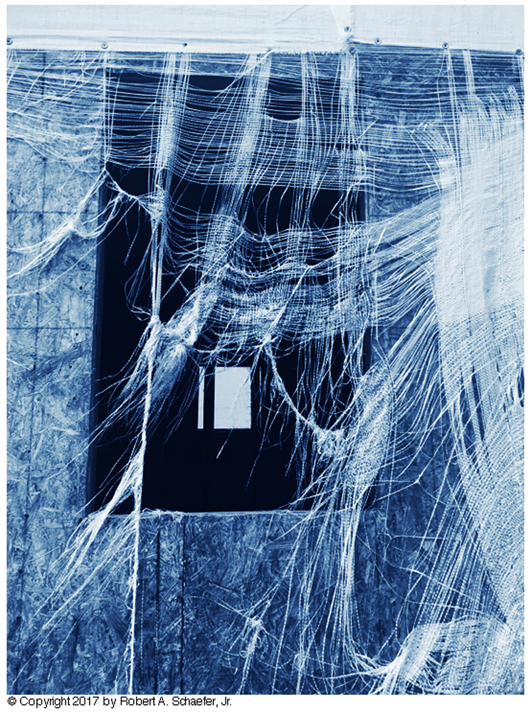 House under Construction, Arabi, LA, 2017 (cyanotype)