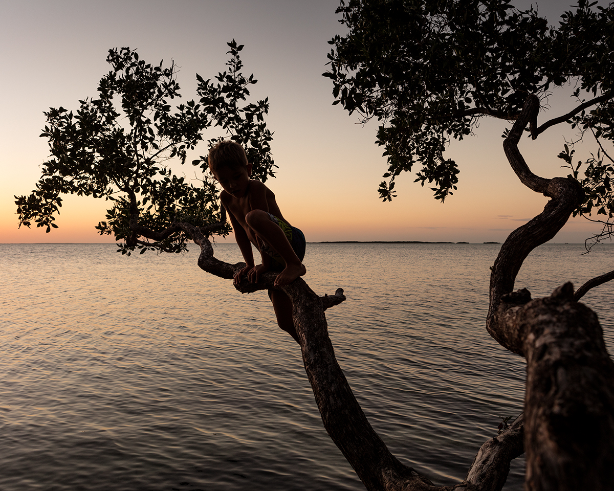High Tide, Key Largo, Florida